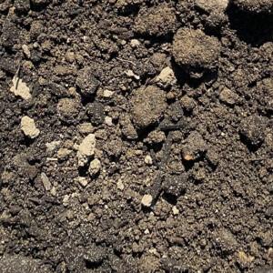 Economy Topsoil