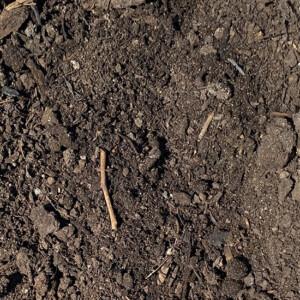 Leaf Compost Topsoil